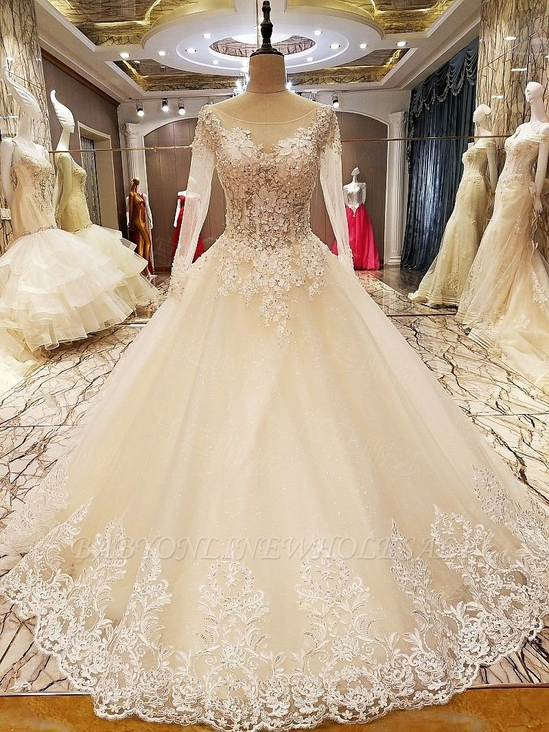 Ball Gown Long Sleeves Appliques Tulle Lace-up Wedding Dresses