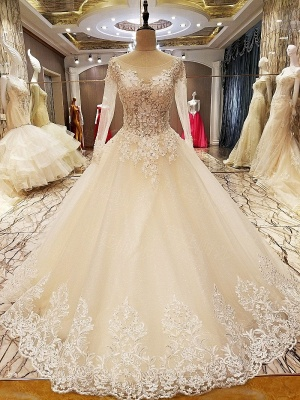 Ball Gown Long Sleeves Appliques Tulle Lace-up Wedding Dresses_1