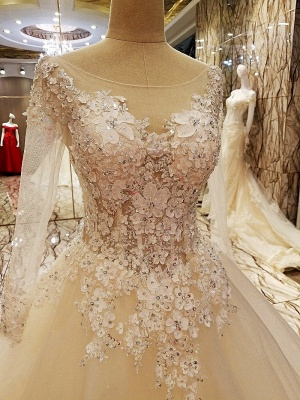 Ball Gown Long Sleeves Appliques Tulle Lace-up Wedding Dresses_3