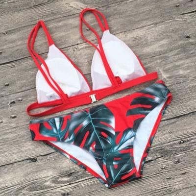 Ensembles de Bikini Imprimés Triangulaires_16