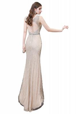 Sexy Mermaid V-neck Silver Mermaid Prom Dress_30