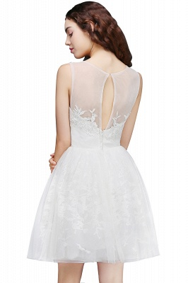 ALEXANDRIA | A Line Sheer Whit Short Tulle Cocktail Dresses With Lace_5