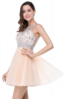 ELISA | A-line Crew Sleeveless Tulle Short Prom Dresses with Beadings_6