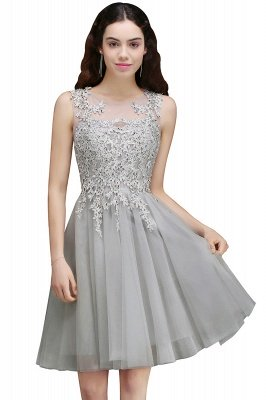ANNA | A-line Short Modern Homecoming Dress With Lace Appliques_3