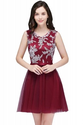 Lace Appliques Homecoming Dresses
