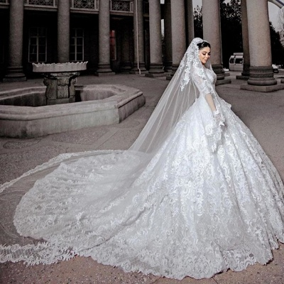Sheer Tulle Long Sleeve Ball Gown Wedding Dresses | Beads Appliques Bridal Gowns With Court Train_2