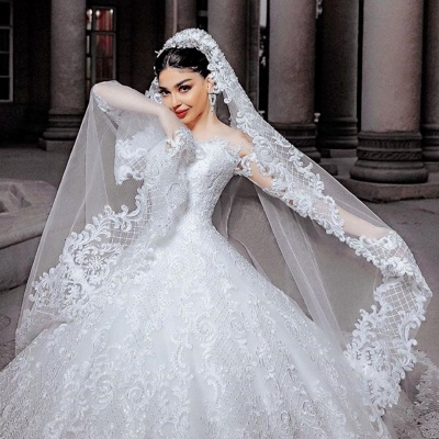Sheer Tulle Long Sleeve Ball Gown Wedding Dresses | Beads Appliques Bridal Gowns With Court Train_3