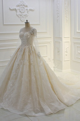 Luxury Ball Gown Long Sleeves Lace Applqiues Beadings Wedding Dress_3