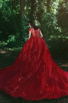 Elegant Red V-Neck OverSkirt Lace Applique Prom Dresses_5