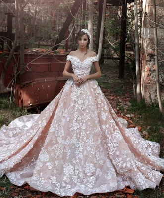 Pink Lace Applique Long Bridal Gown New Off the Shoulder Chapel Train Wedding Dresses BA3863
