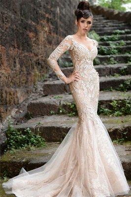 Mermaid Long Sleeve Ivory Lace Wedding Dresses | Sexy Sheer Tulle See Through Back Evening Dresses_1